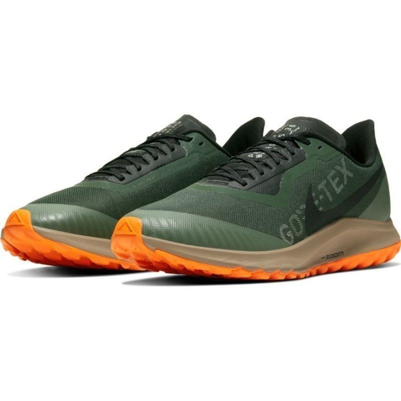 Nike Air Zoom Pegasus 36 Trail Gore Tex